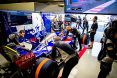 Branding for Toro Rosso, 2017 Mexican Grand Prix, Friday and Saturday, Part 2 Image © Toro Rosso - 29th Oct 2017 - www.f1reports.com